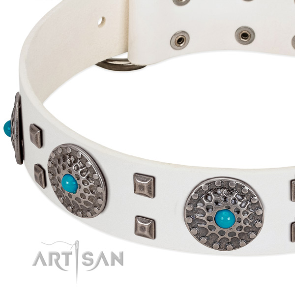 Quality leather dog collar with unique studs