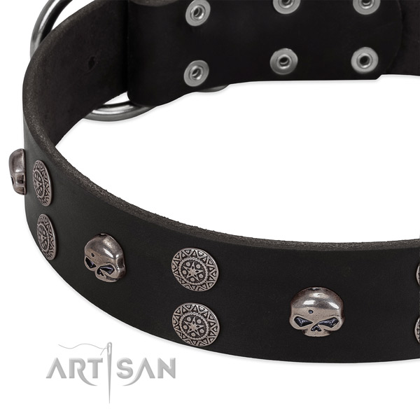 Top notch full grain genuine leather dog collar with trendy studs