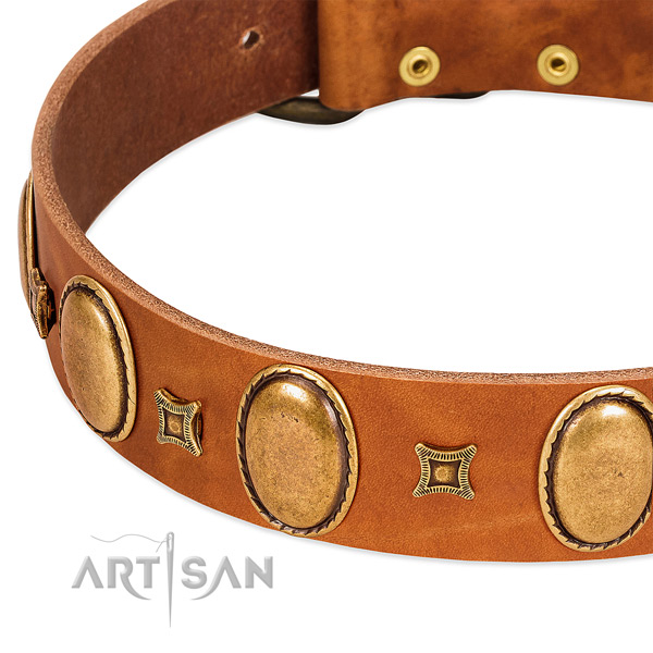 Natural leather dog collar with reliable hardware for comfy wearing