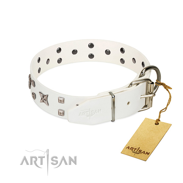 Reliable leather dog collar with designer embellishments