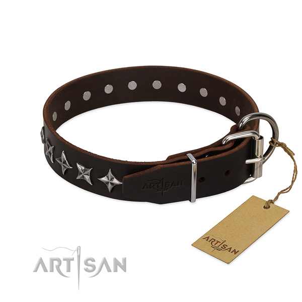 Everyday walking decorated dog collar of finest quality leather