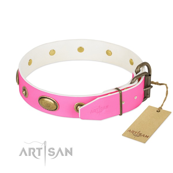 Reliable studs on natural leather dog collar for your pet
