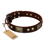 """Magic Amulet"" Brown Leather Doberman Collar with Skulls and Plates"