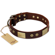 """Shining Armour"" FDT Artisan Brown Leather Doberman Collar with Decorations"