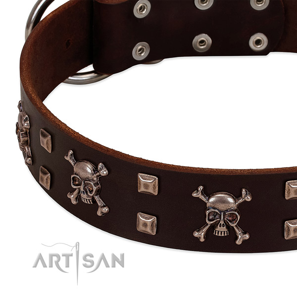 Handmade collar of genuine leather for your handsome four-legged friend