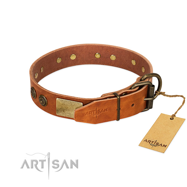 Strong buckle on genuine leather collar for basic training your doggie