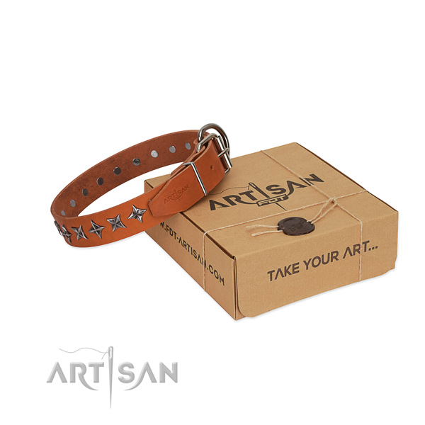 Comfy wearing dog collar of best quality full grain leather with embellishments