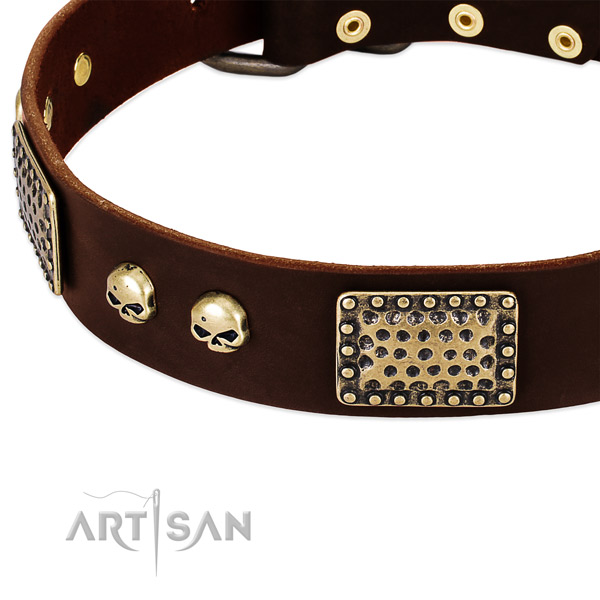 Rust resistant studs on full grain genuine leather dog collar for your four-legged friend