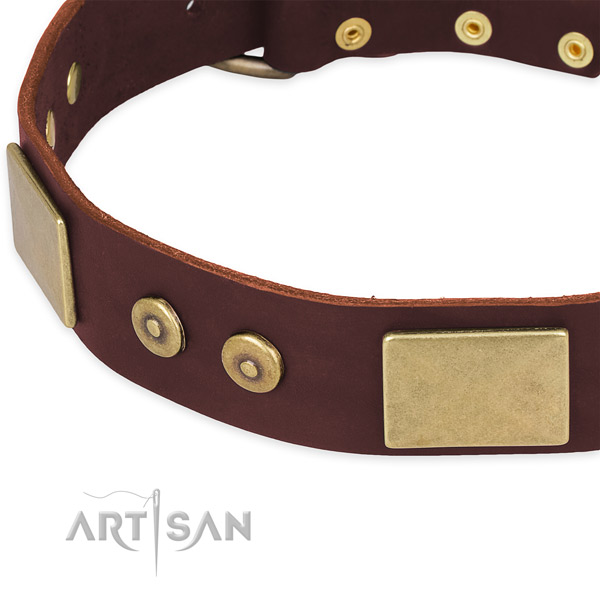 Leather dog collar with studs for comfortable wearing