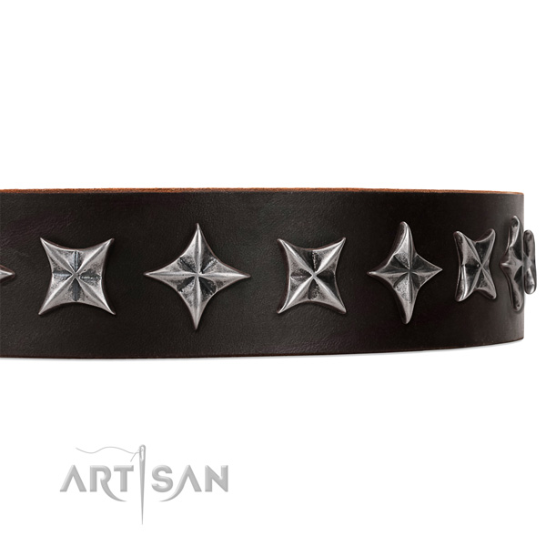 Daily walking studded dog collar of high quality leather
