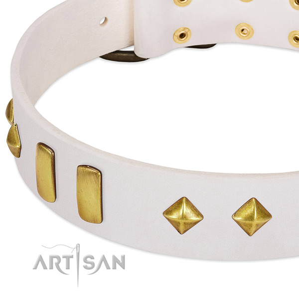 Comfy wearing natural leather dog collar with stylish design adornments