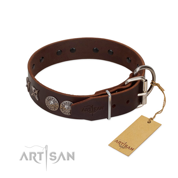 Comfortable wearing dog collar of genuine leather with extraordinary embellishments