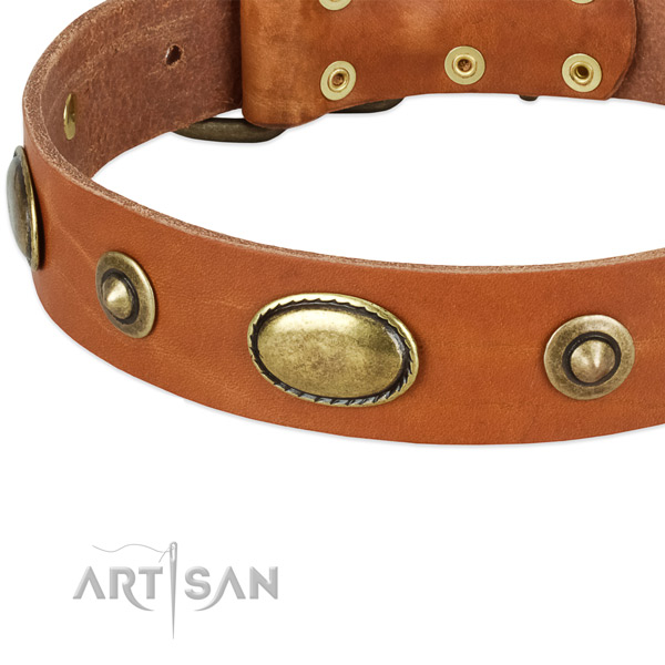 Rust resistant buckle on natural leather dog collar for your doggie