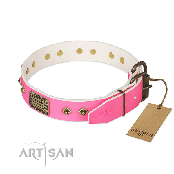 Durable adornments on daily walking dog collar