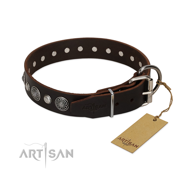 Top quality full grain leather dog collar with unusual embellishments