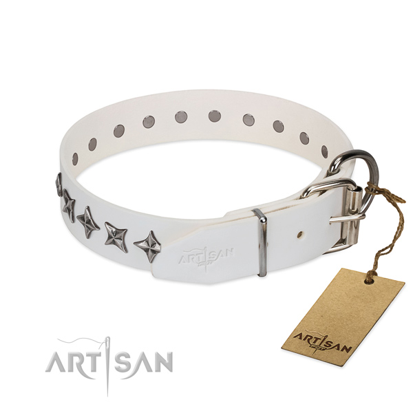Stylish walking decorated dog collar of top notch full grain natural leather