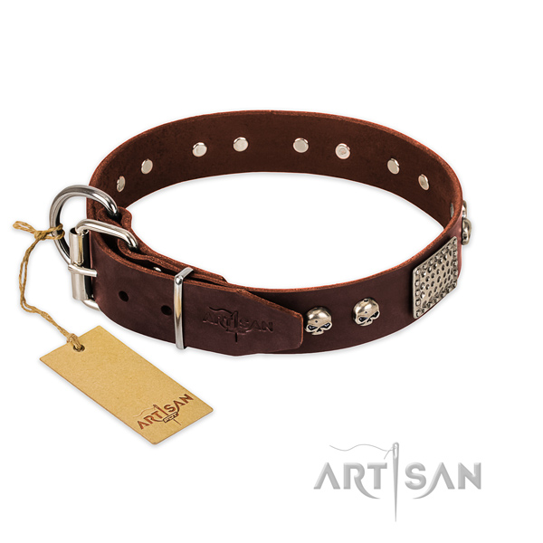 Corrosion proof traditional buckle on basic training dog collar