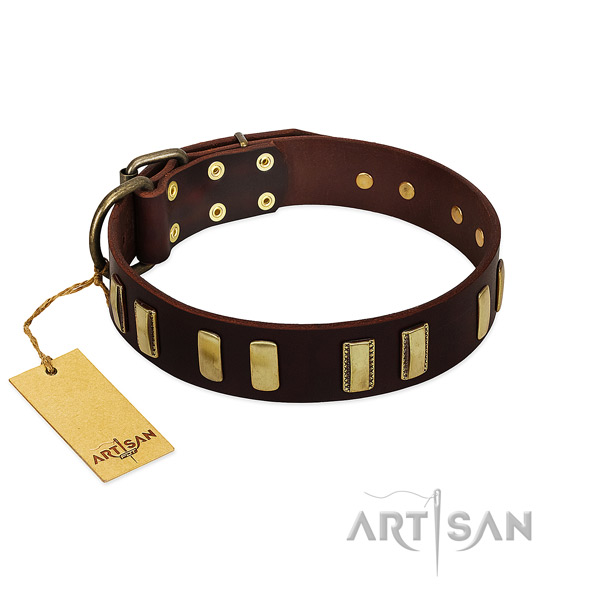 Full grain genuine leather dog collar with strong traditional buckle for stylish walking