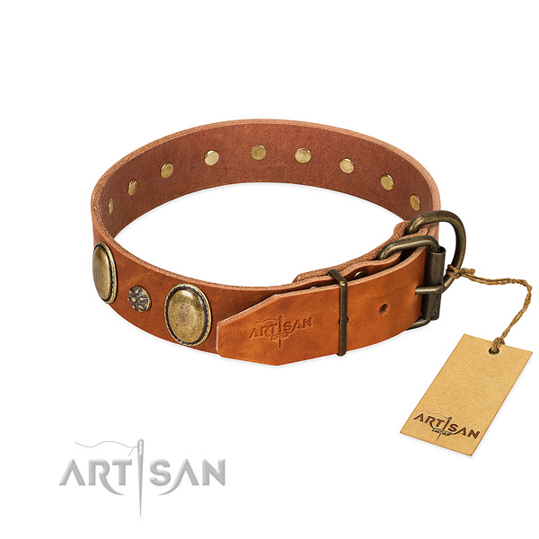Daily use high quality full grain natural leather dog collar