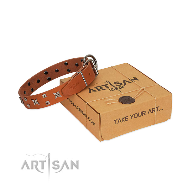 Soft full grain natural leather dog collar with studs for everyday walking