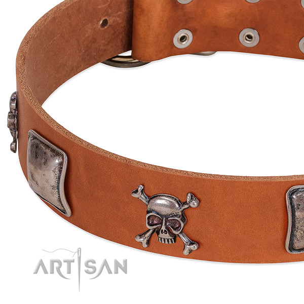 Reliable adornments on full grain natural leather dog collar