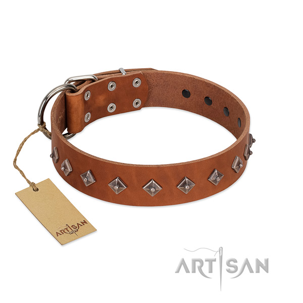 Genuine leather dog collar with stylish design embellishments crafted doggie