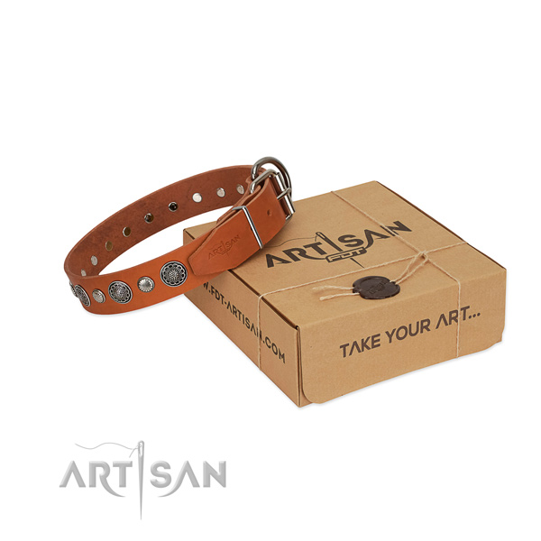 Durable full grain natural leather dog collar with exceptional adornments