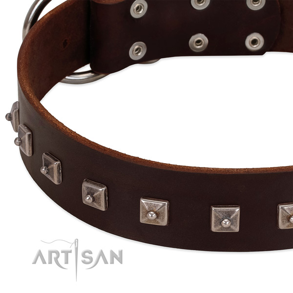 High quality leather collar with decorations for your dog