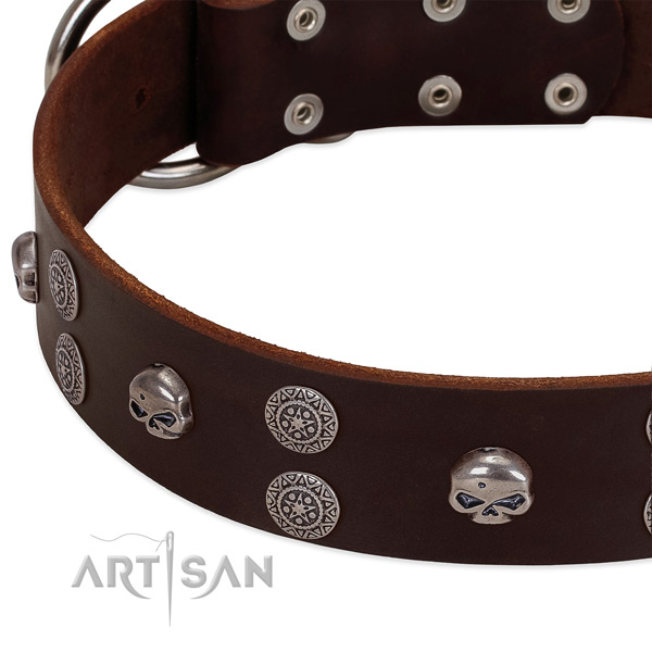 Reliable genuine leather dog collar with exceptional decorations