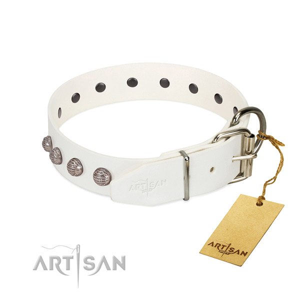 Leather dog collar of best quality material with incredible adornments
