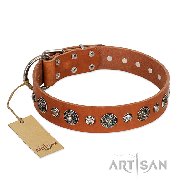 Fine quality natural leather dog collar with exquisite embellishments