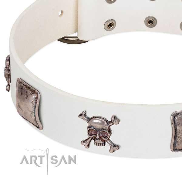 Rust resistant fittings on leather dog collar