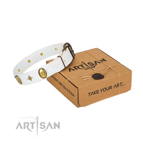 Top notch natural leather dog collar with trendy embellishments