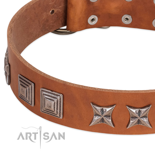 Quality natural leather dog collar with durable traditional buckle