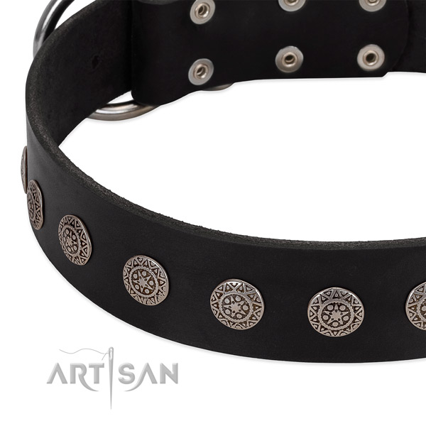 Extraordinary full grain natural leather collar with studs for your pet