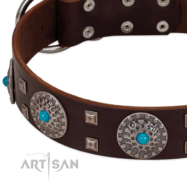 Top notch natural leather dog collar with inimitable embellishments