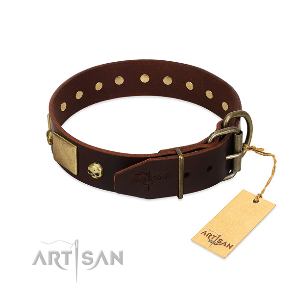 Quality natural leather dog collar with corrosion resistant studs