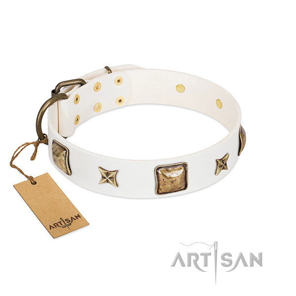 Awesome leather collar for your pet