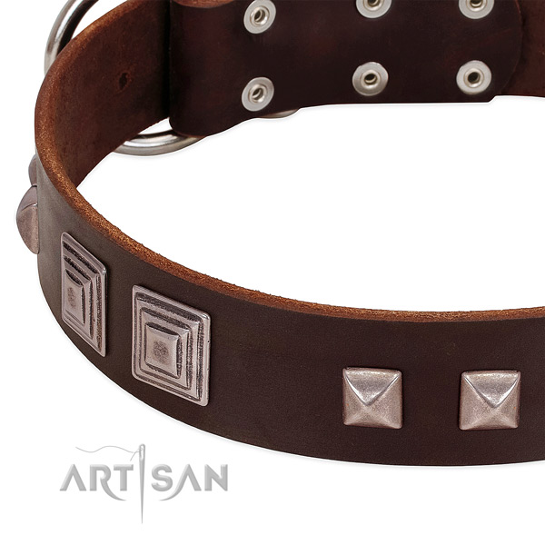 Rust resistant traditional buckle on full grain leather dog collar for daily use