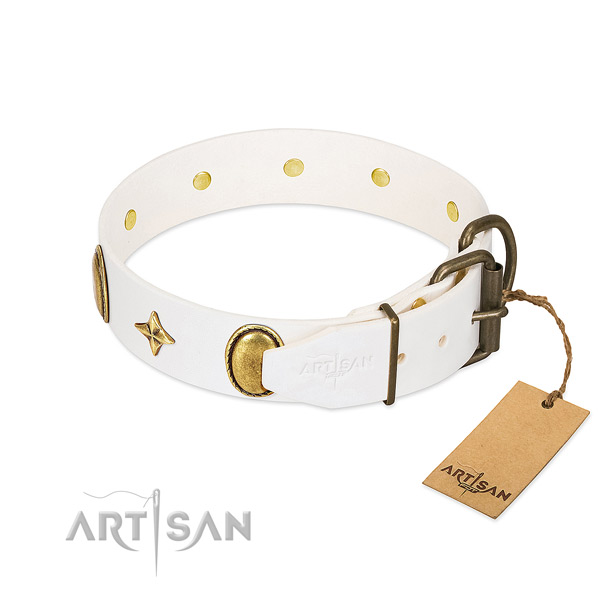 Strong leather dog collar with exceptional studs