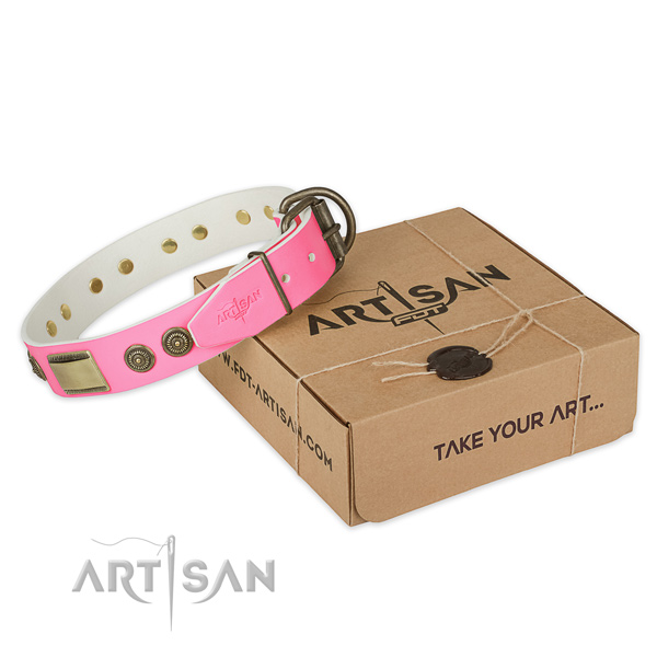 Rust resistant hardware on dog collar for comfortable wearing
