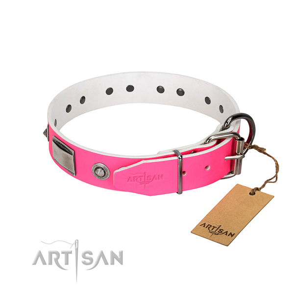 Trendy leather collar with studs for your dog