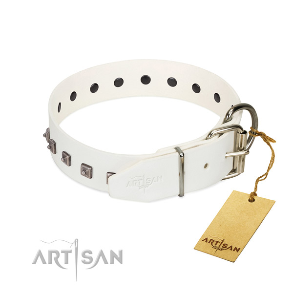 Gentle to touch natural leather dog collar with studs for daily walking