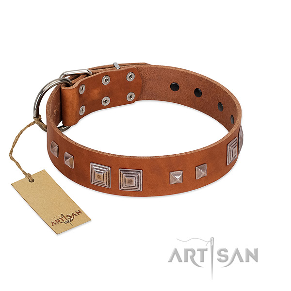 Reliable D-ring on full grain natural leather dog collar for easy wearing