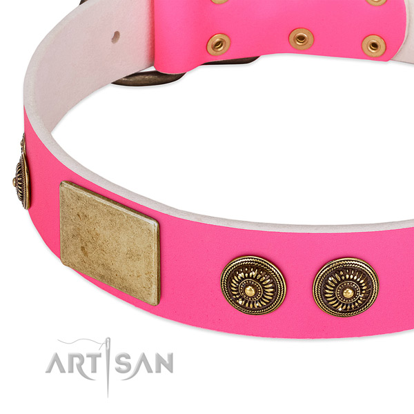 Comfortable dog collar made for your lovely canine