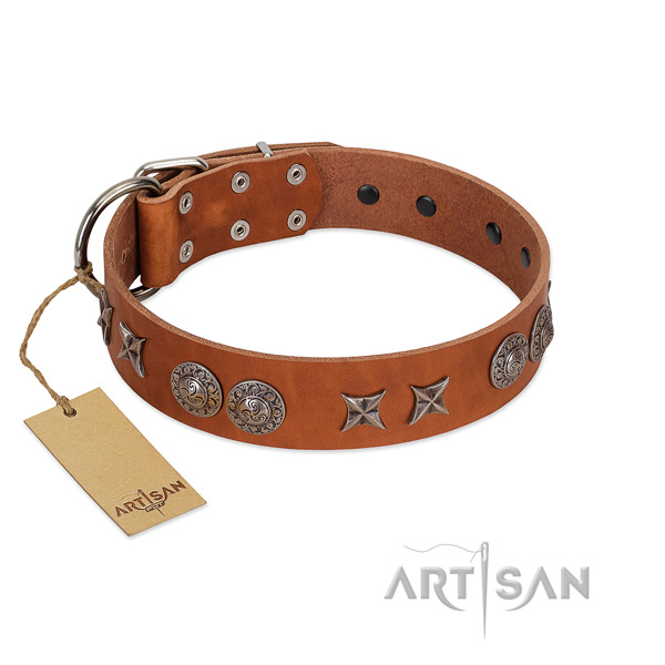 Full grain genuine leather collar with stylish studs for your doggie