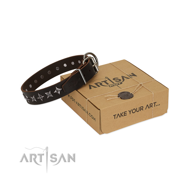 Comfortable wearing dog collar of finest quality full grain genuine leather with adornments