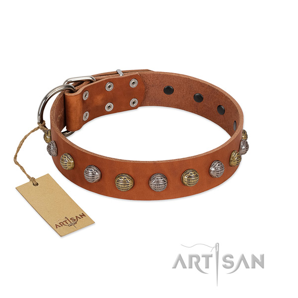 Rust resistant fittings on genuine leather dog collar for everyday walking your four-legged friend