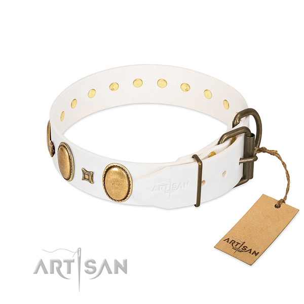Reliable studs on daily walking dog collar
