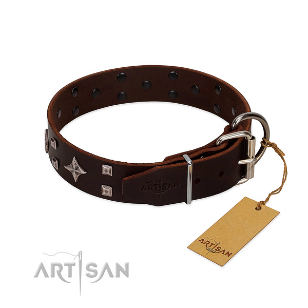 Exquisite leather collar for your four-legged friend walking